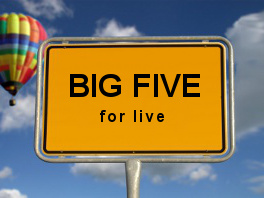 Big five for live - John Strelecky